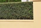 Applecross Decorative fencing 30
